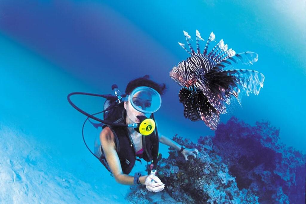 Snorkeling Tahiti